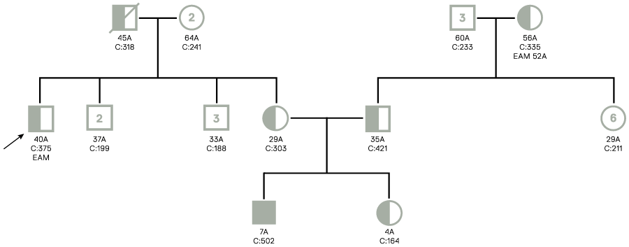 arvore_genealogica